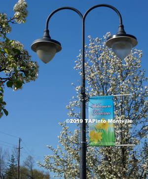 Carousel_image_3fd0293ece6064618902_towaco_in_the_spring__2019_tapinto_montville