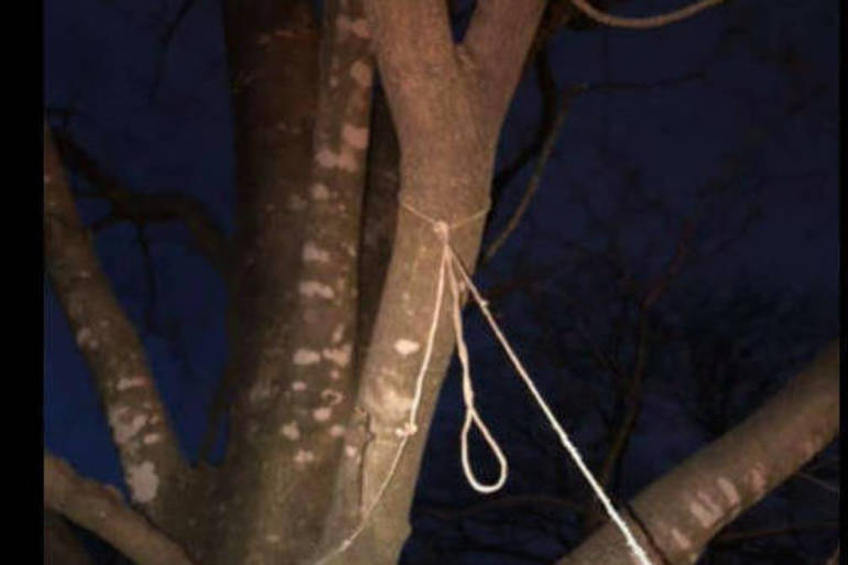 Fair Lawn Resident Wakes Up to Apparent Noose in Her Tree