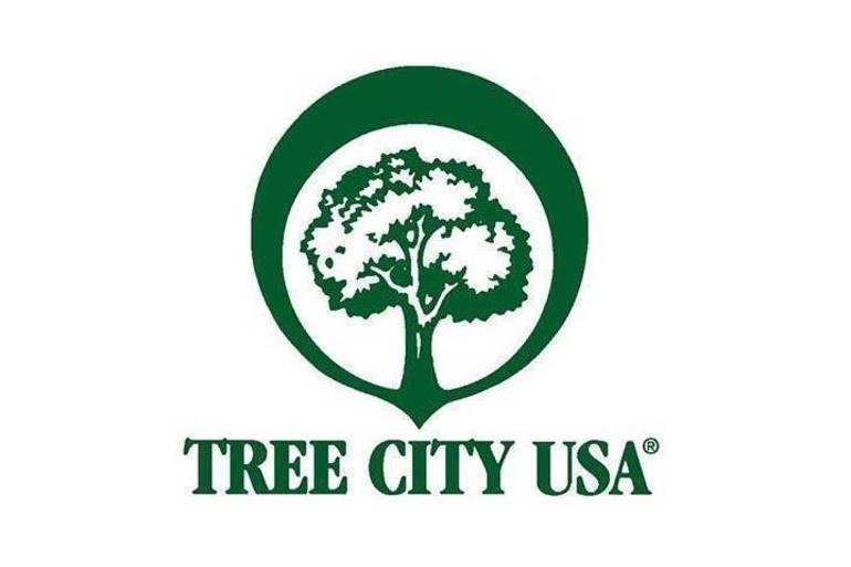 Best crop 0df1c0a29f2dfb8b241e tree city usa grapevine texas