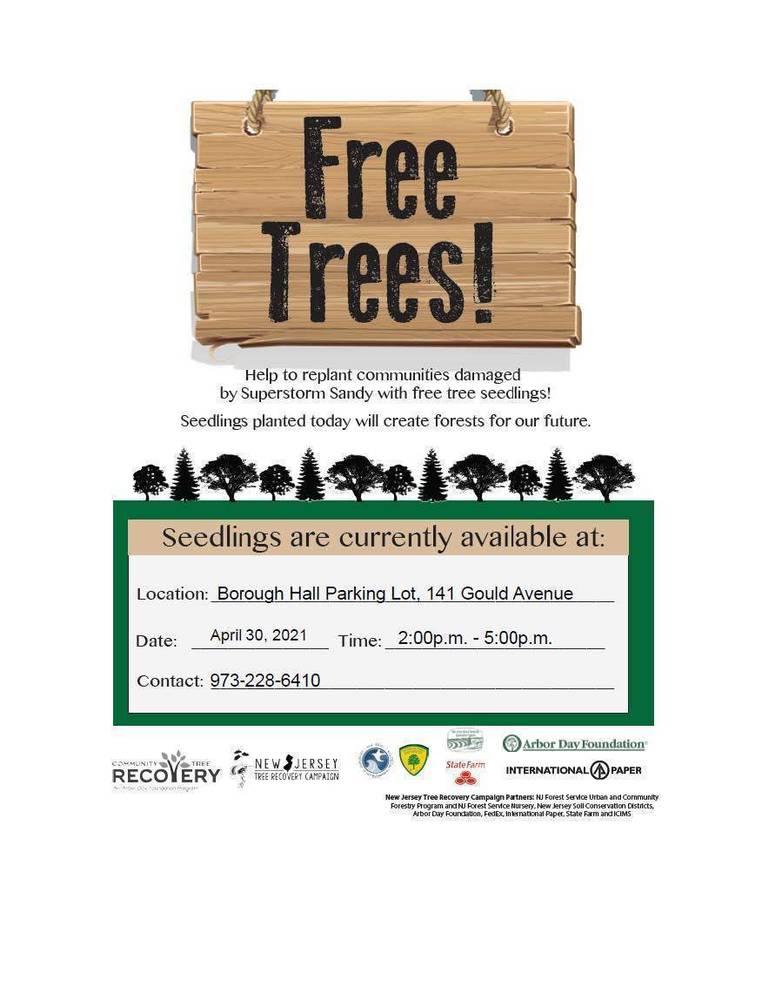 Best crop 406b5a2a868505af32de tree seedling poster