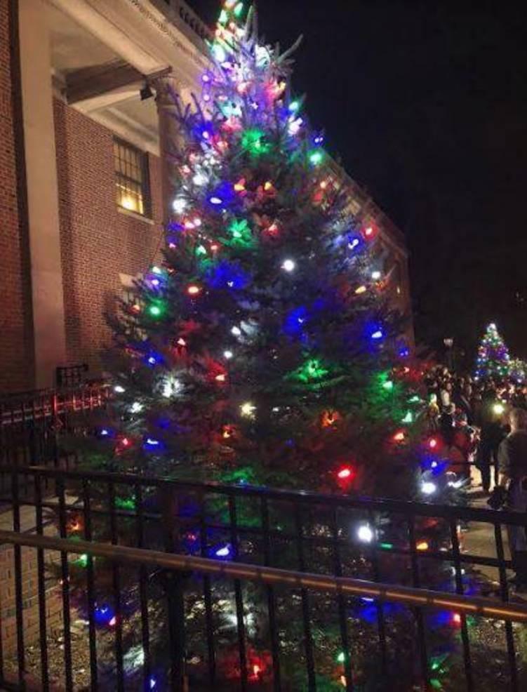 Tree Lighting Bloomfield k.JPG