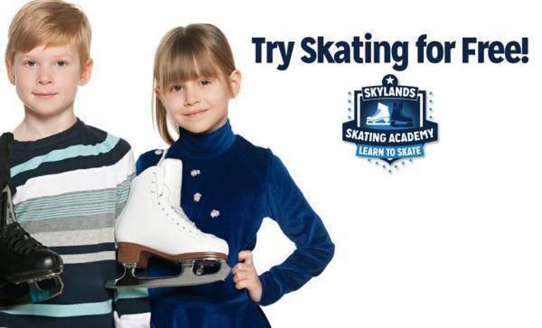try skating free.jpeg