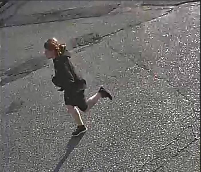 triton hunterdon raritan robbery suspect3.jpg