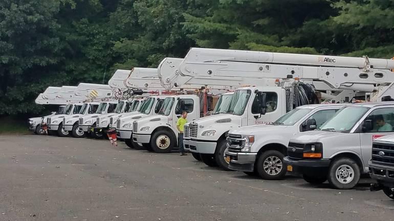 tree trucks.jpg