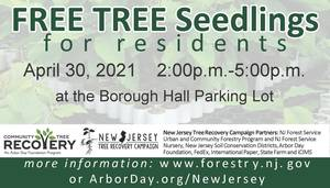 Carousel image 6566c6212bef679a8f52 tree seedling day ad