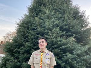 Roxbury Boy Scout Christmas tree