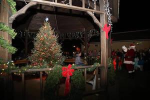 Carousel image b0b2fe66b6b3b17e8c4c treelightingrandolph