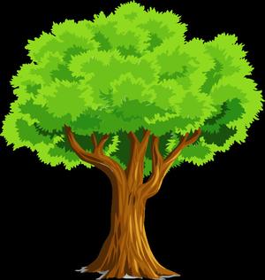 Carousel image bc68f685f1e1579a8f52 tree giveaway