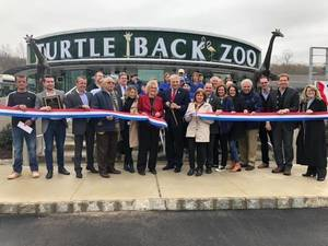 Carousel image 3bda986eb1bc69af586d turtleback zoo