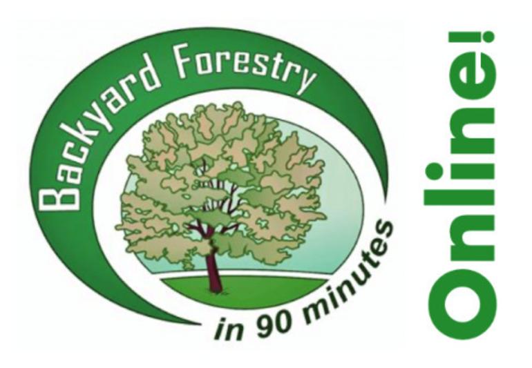 "Madison Environmental Commission Presents ""Winter Tree ID: Part 2"""
