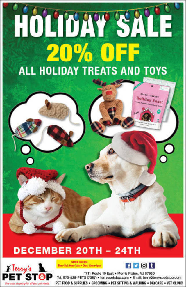 Shop These Holiday Deals at Terry's Pet Stop