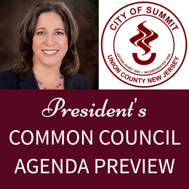 Summit Common Council Agenda Preview - January 19