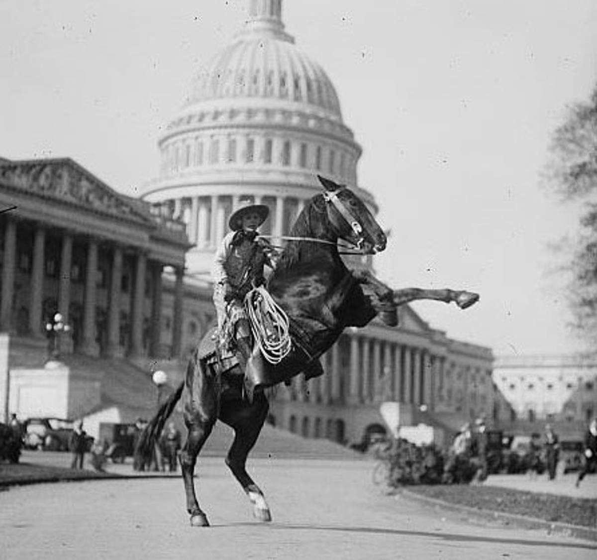vintage horse rearing capitol crA.JPG