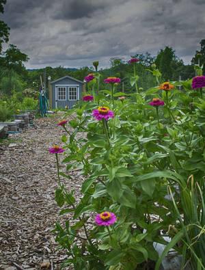 Carousel image 186e85e60bf397c51372 vk garden summer 2