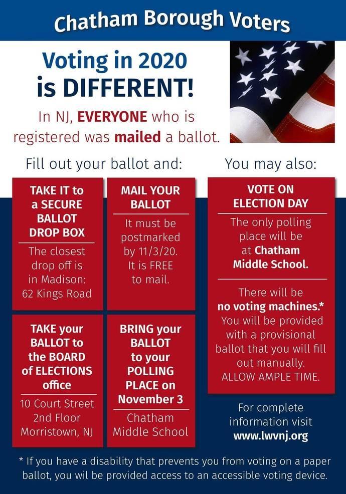 Voting Explanation.jpeg