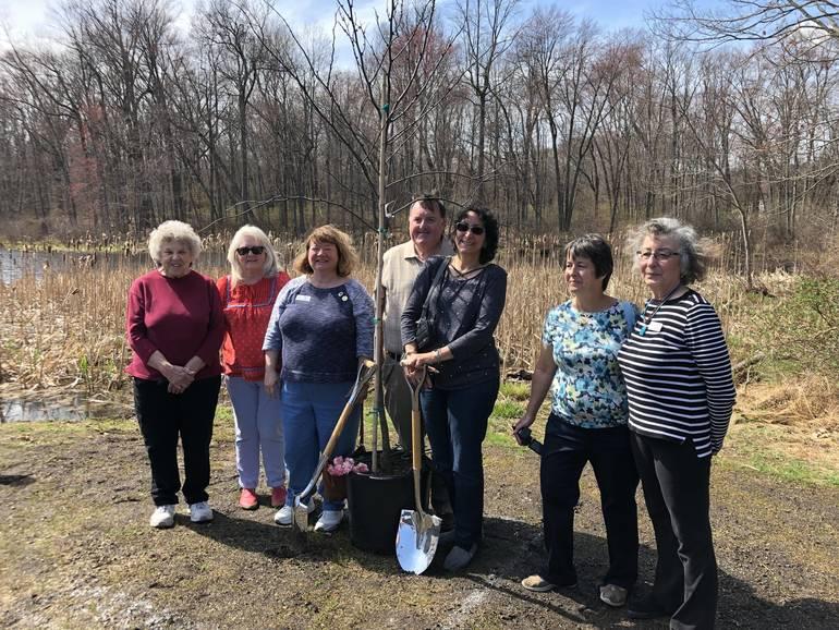 WC tree planting 2019.jpg