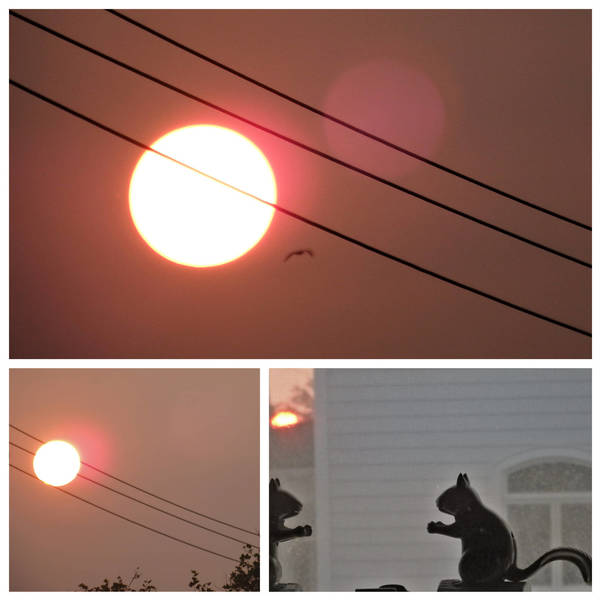 weatherhazyfirescollage9-16-20.jpg