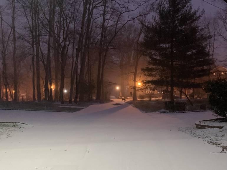 westfield nj snow