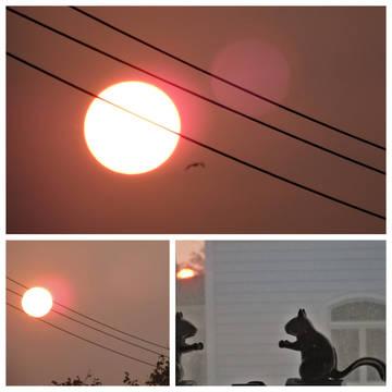 Top story 369cca2eb3a84c3454ff weatherhazyfirescollage9 16 20