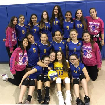 Top story e4f5368ec15def5fa8af westglades volleyball 2