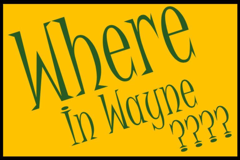 WhereInWayne Logo.png