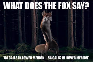 Carousel image 83916d9c80c8ff75454c what does fox say meme