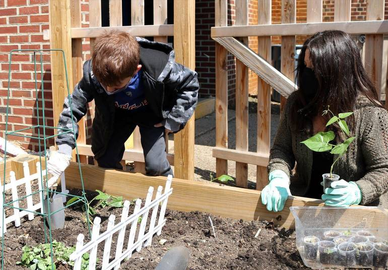 Westfield First Graders Explore Life Cycle of Plants
