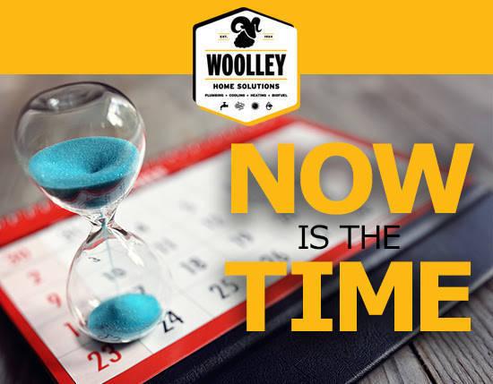 woolley special.jpg