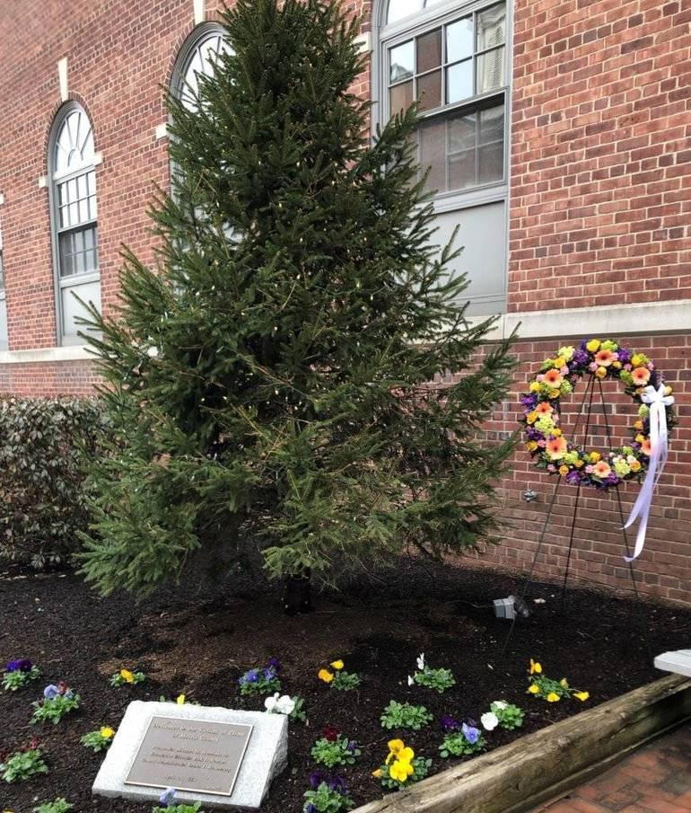 Wreath-and-Tree-871x1024.jpg