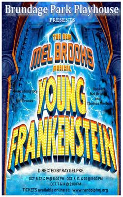 Carousel image de2d04266ac12a430b8c young frankenstein program