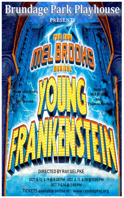 Top story de2d04266ac12a430b8c young frankenstein program