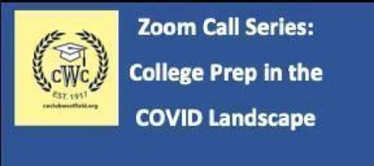 Zoom series V2 logo.jpg