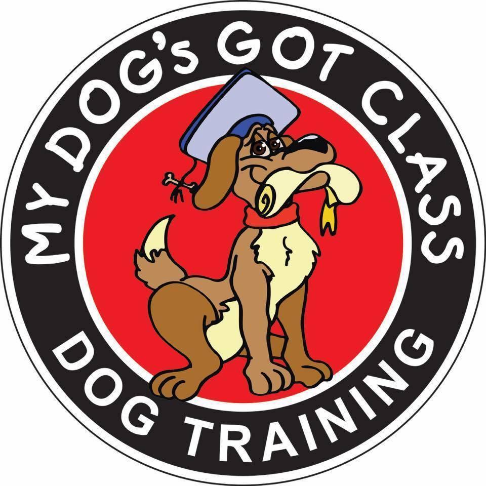 D260bcf00aa798e104f7 my dog s got class