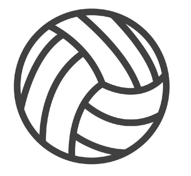 08981c89013347f078bd_Sports_Volleyball_2.png
