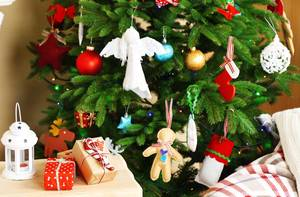 Doing Post-Holiday Clean Up? Christmas Tree Pick Ups in City, Township