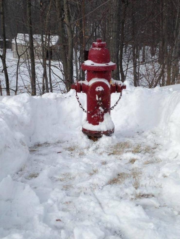 1f87555cc1dbac717a1c_fire_hydrant.jpg