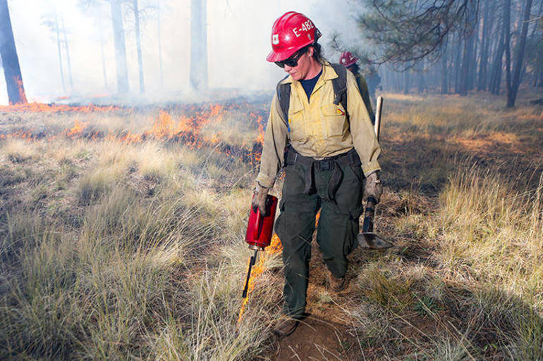 Governor Murphy Authorizes Prescribed Burns to Improve NJ Forests