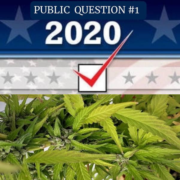 League of Women Voters Explain Public Question #1: Constitutional Amendment to Legalize Marijuana