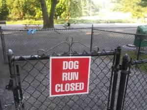 Fallen Tree Causes Dog Run Closure in Hawthorne