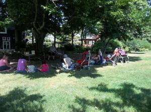 Have a Picnic Lunch Today with Macculloch Hall's Lunch with the Librarian