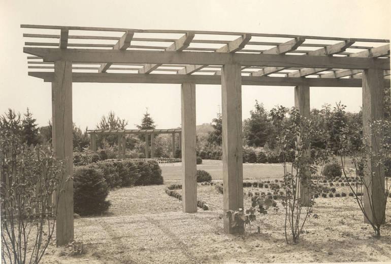 Dey Gardens 2