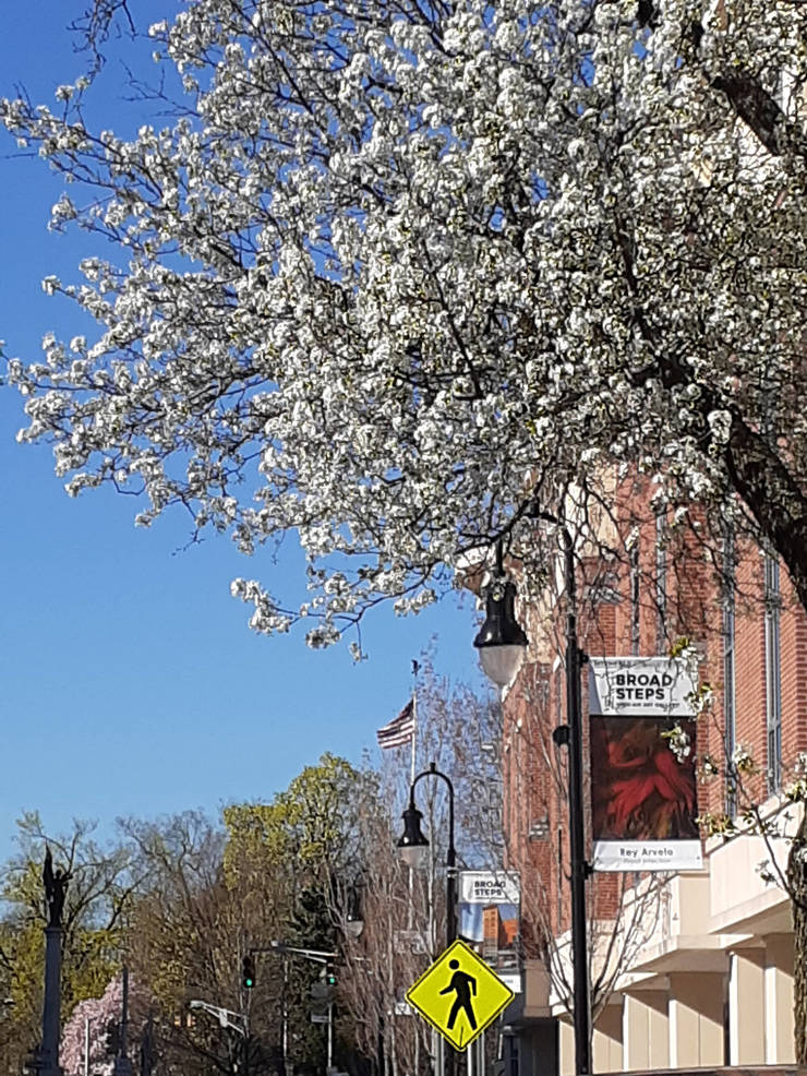 Bloomfield Department of Parks, Recreation and Cultural Affairs to Host Open-Air Art Gallery From April-May