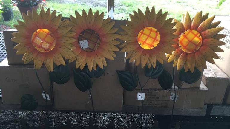 10% Fall Savings At Fairfield Farms & Greenhouses