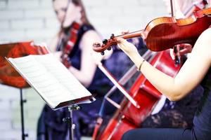 music, art, theater, education