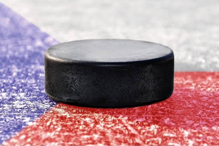 Ice Hockey Puck