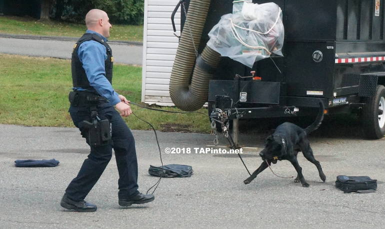 a Det. Michael Carbone and Boomer as he looks through suitcases for bombs ©2018 TAPInto Montville.JPG