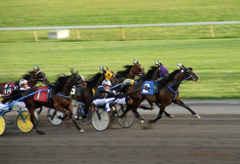 amt racing billings r105.jpg