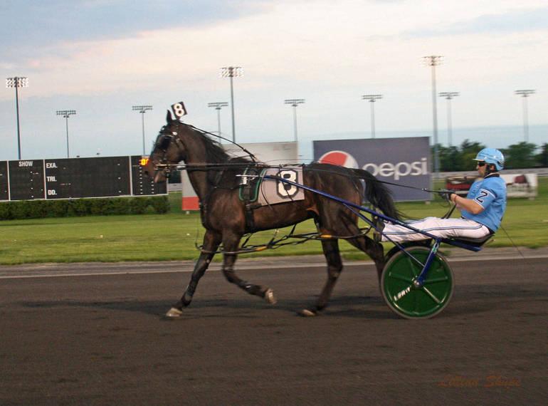 amt racing gsy r301.jpg