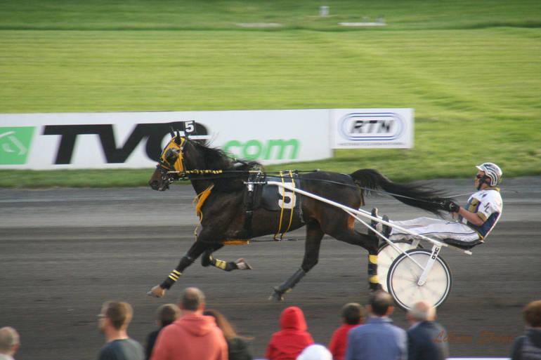 amt racing billings r102.jpg