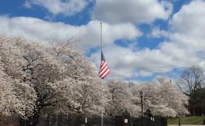American Flag Half-Staff, Nutley Oval